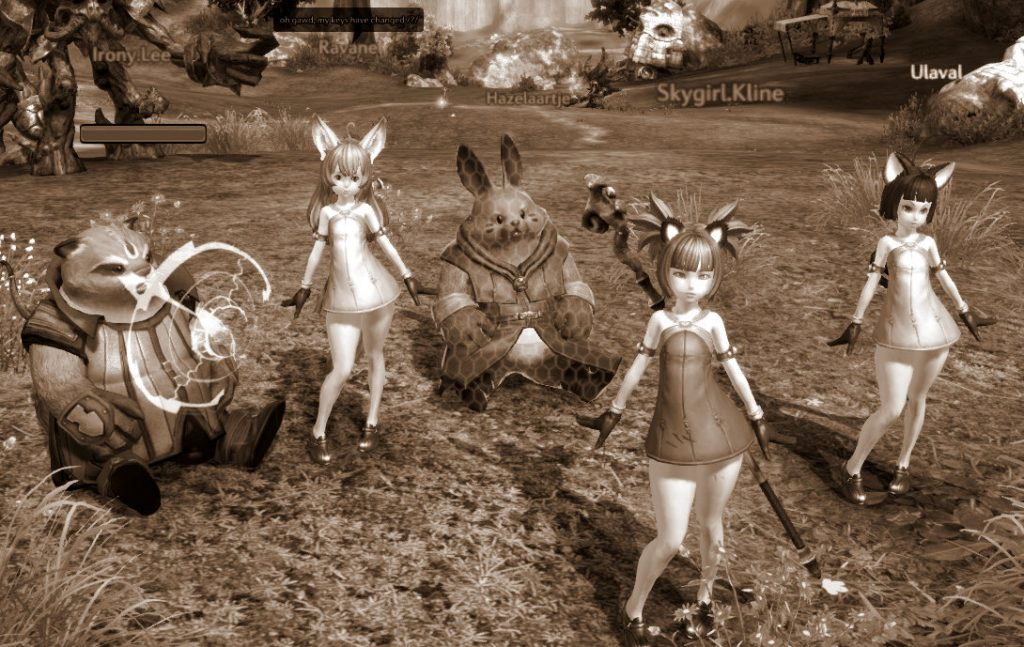 Avatars taking a break for a group photo in a clearing of the MMORPG Tera (Tera Enmasse)