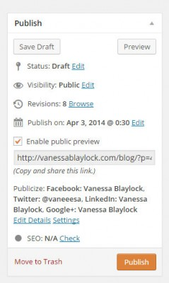 screen capture of the WordPress publish panel, featuring the Public Post Preview plugin