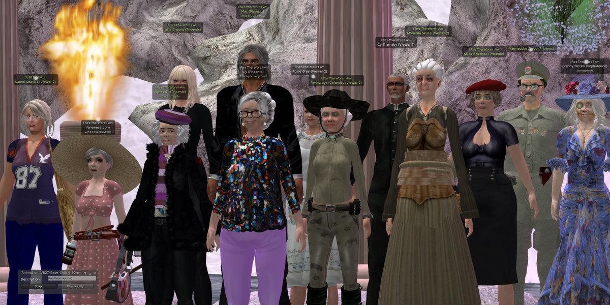 VB28 – The Seniors Project